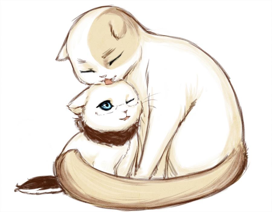 kitten care by SilentSeven