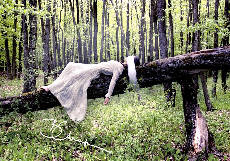 memory of trees by waveystar