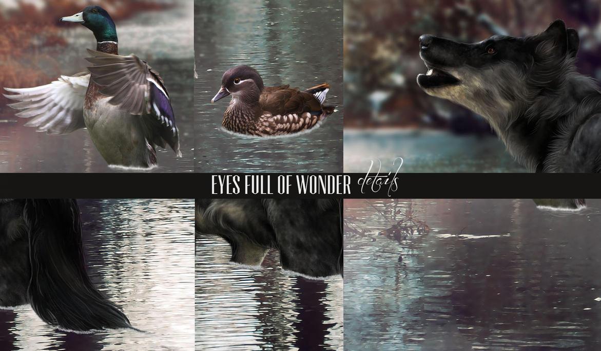 Eyes Full Of Wonder ~ Details by BeckoningSilence
