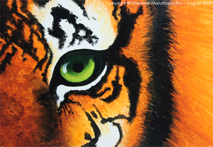 Eye of the Tiger by Tineswari