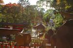 Cemetery at Fushimi Inari Shrine in Kyoto