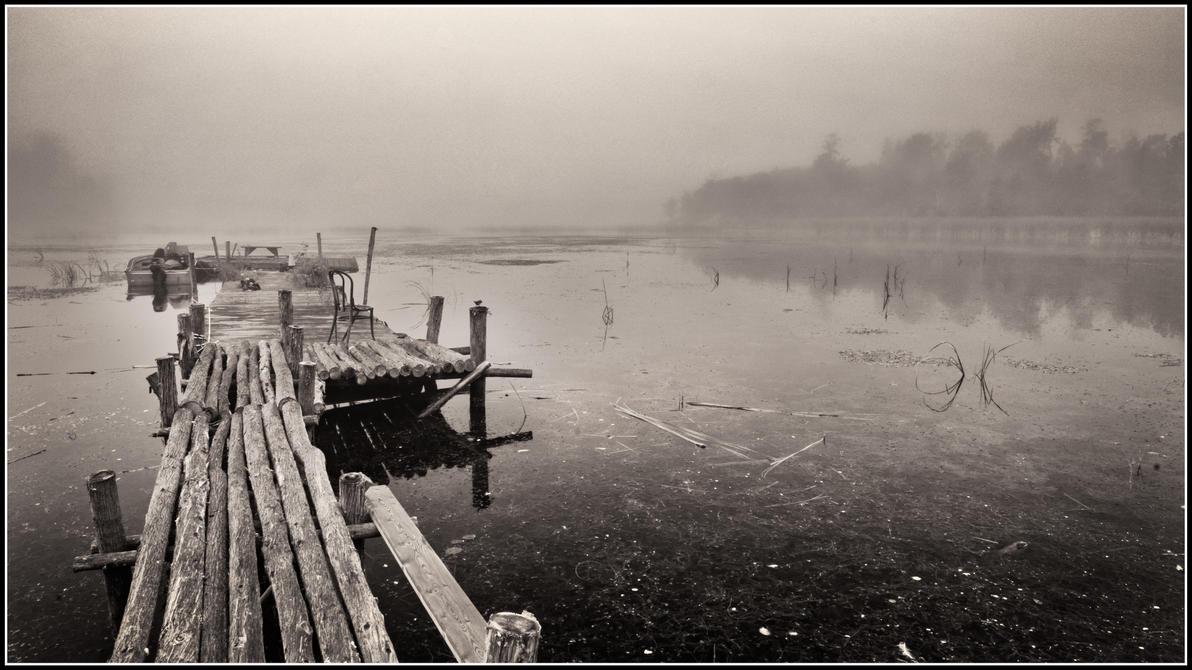 Foggy dock by xedgerx