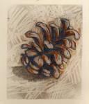 pinecone by xedgerx