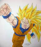 Ssj3 Dragon Fist Re-color