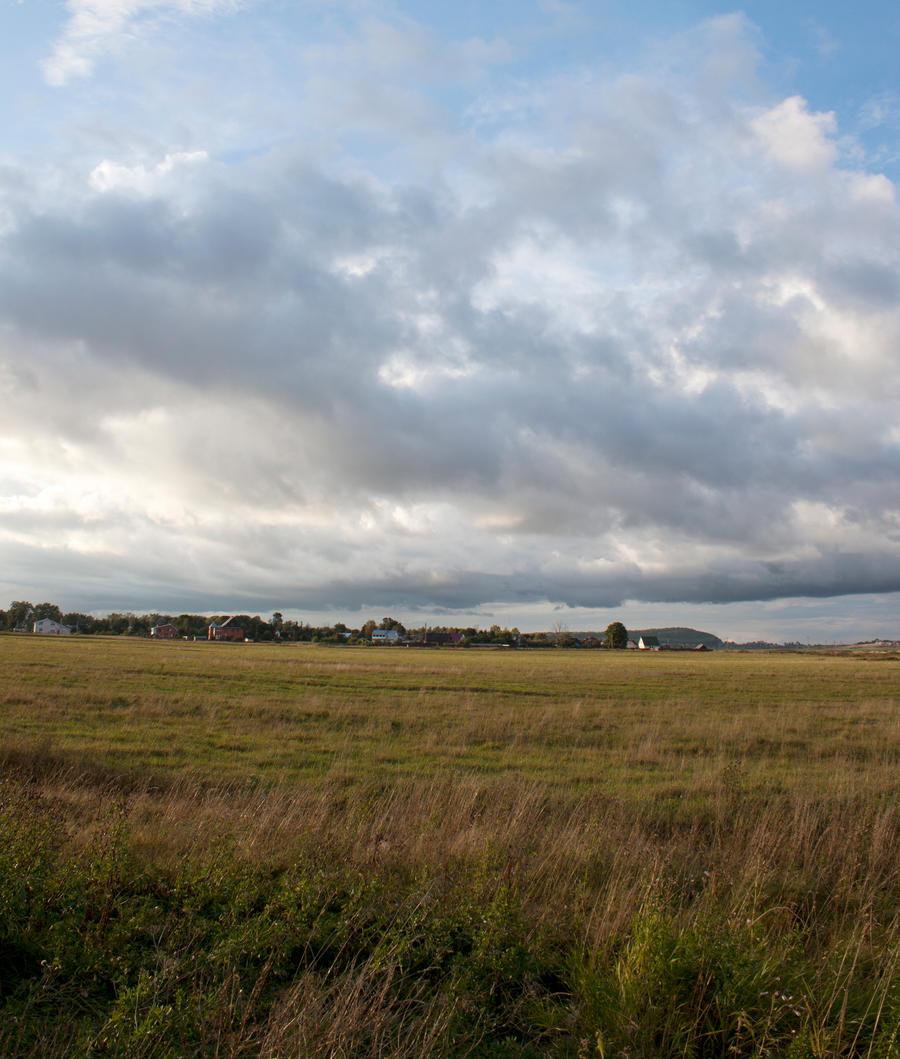 Field 3