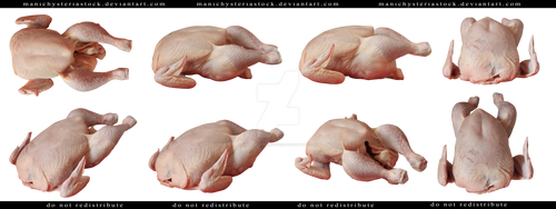 Raw Chicken Cut Out