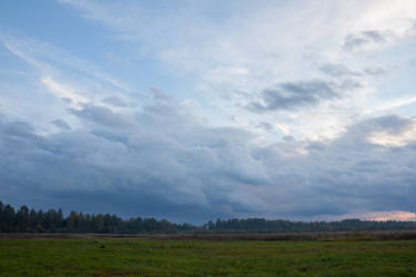 Dark Clouds Over Forest