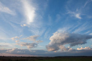 Evening Sky Field 3