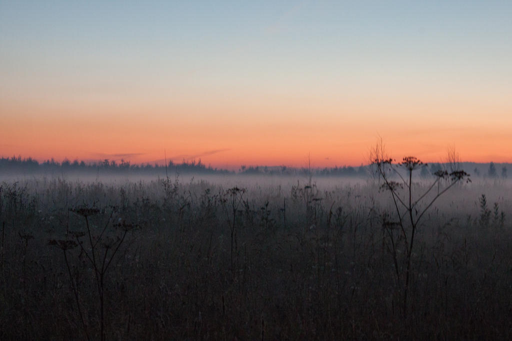 Fog late sunset by ManicHysteriaStock