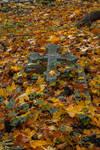 Autumn Cemetary 17