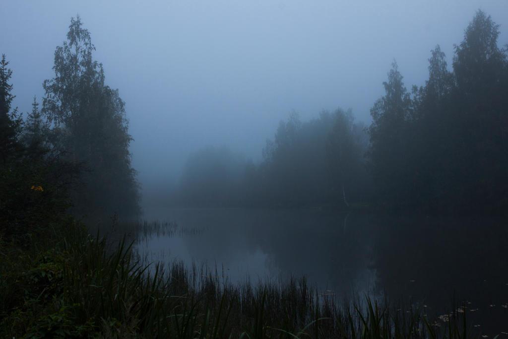 Foggy Lake Twilight 5