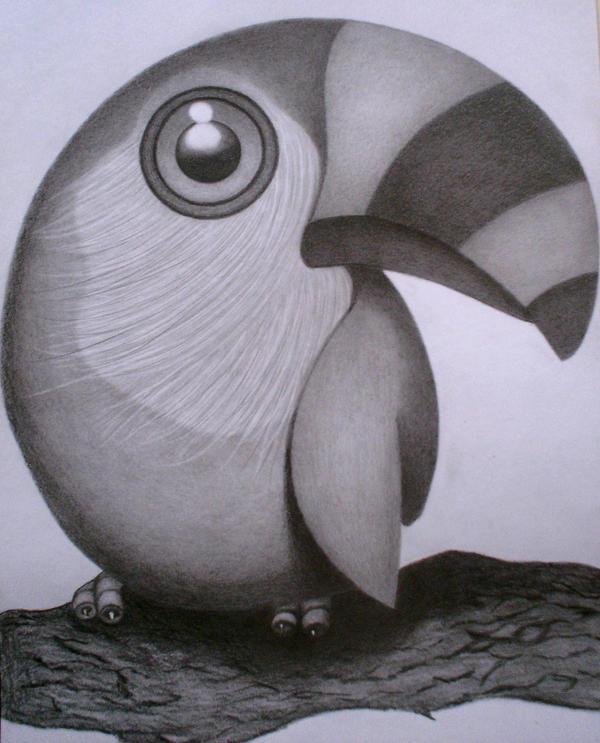 BRAZILIAN BIRD by sinsenor