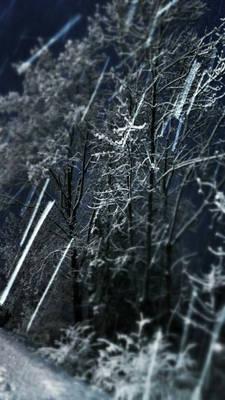 Snowy snow snow