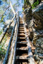 Ladder of horror