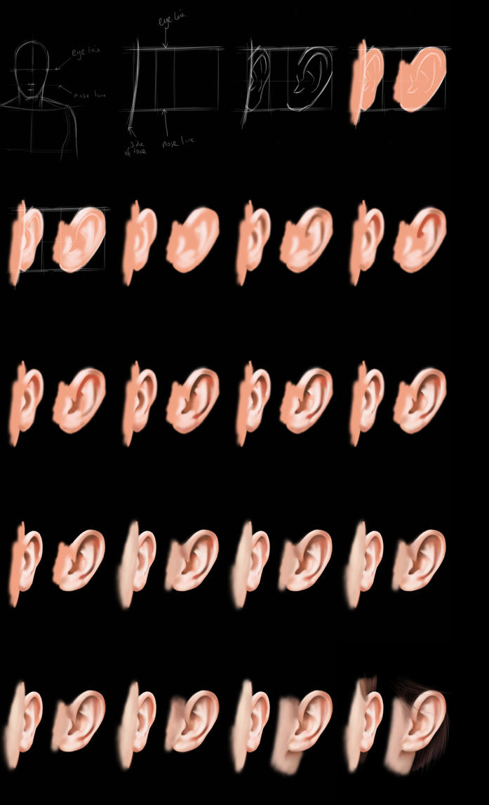 Ear steptutorial by jht888 on deviantart ear steptutorial by jht888 baditri Images