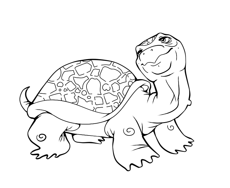 coloring page turtle by TinderboxFox on DeviantArt