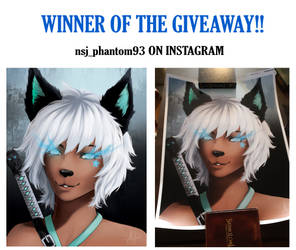 Winner of the Giveaway