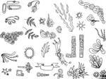 215 Doodles