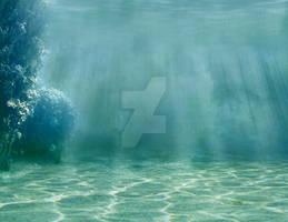 286 Underwater Lagoon