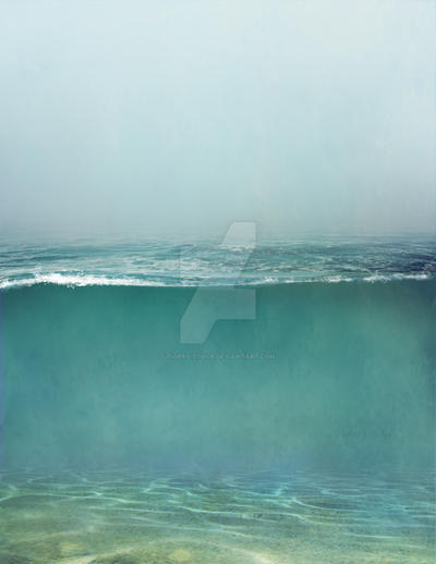 480 underwater partition 01