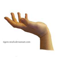 604 Hand Png by Tigers-stock