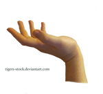 604 Hand Png