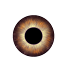 642 Iris Overlay