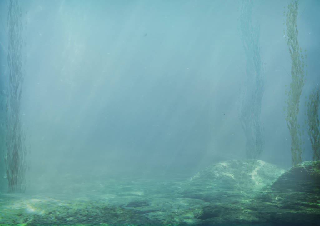 859 Edge Of The Kelp Forest by Tigers-stock