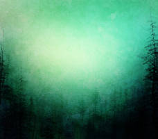 971 Pine Trees Background by Tigers-stock