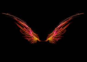 1060 Firefey Wings