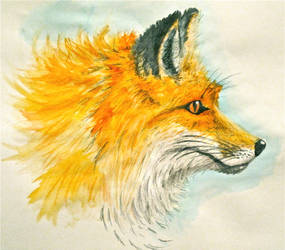 Fox - Watercolor by Trista-Willows