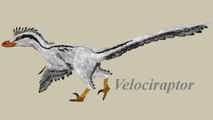 Velociraptor by ultamateterex2