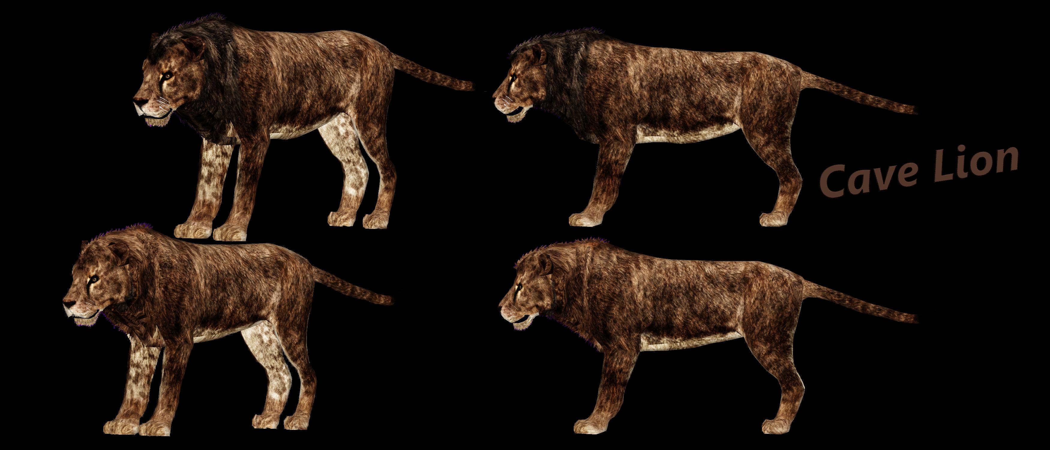 Mammoth Cave Wild Cave Tour Lion