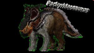 Pachyrhinosaurus by ultamateterex2