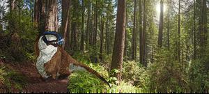 Acrocanthosaurus resting