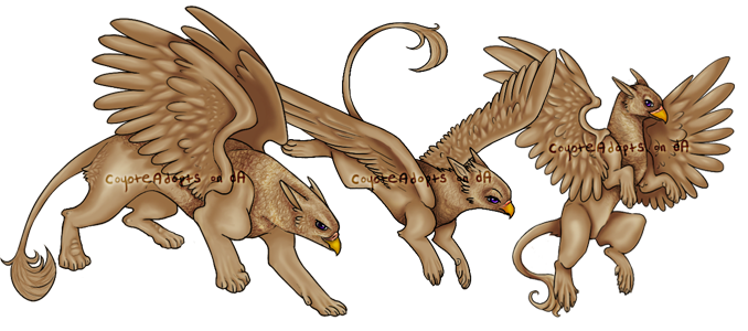 Gryphon by CoyoteAdopts