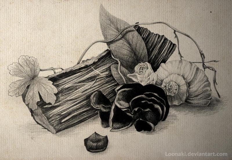 Still life by Loonaki