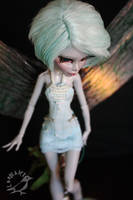 Libella by Loonaki