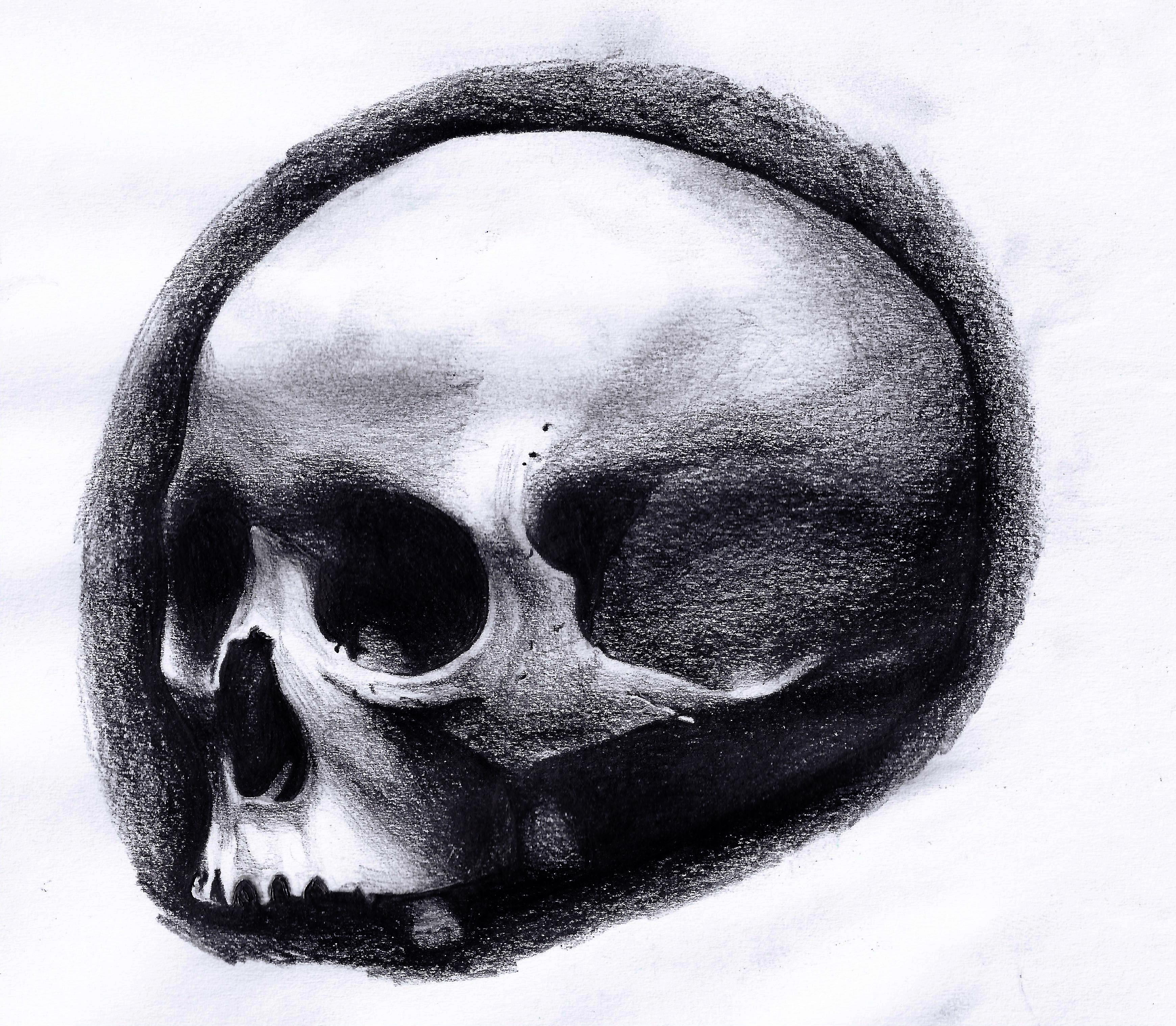 Прикольные черепа рисунки, можно сделать