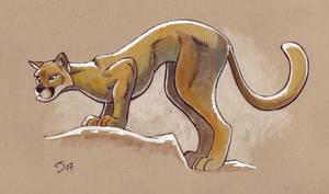 Coumatamountain Lion by Sankam