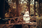 Lady of the Golden Wood
