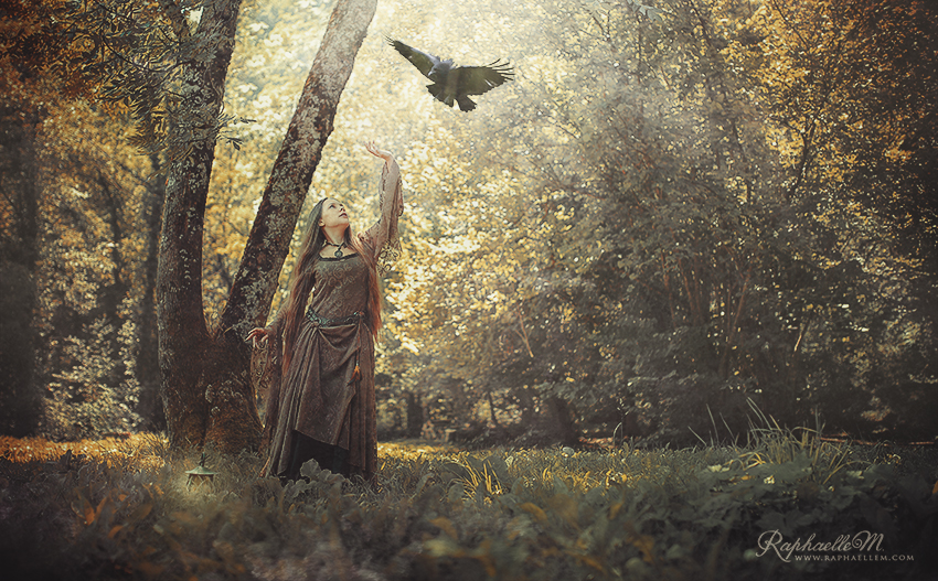 The Enchantment by RaphaelleM