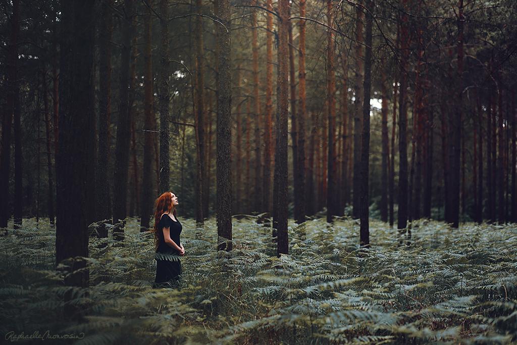 Chorus of Trees by RaphaelleM