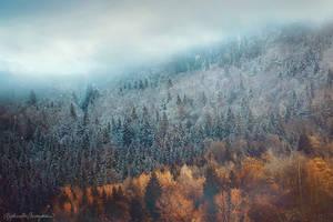 The Edge of Seasons by RaphaelleM