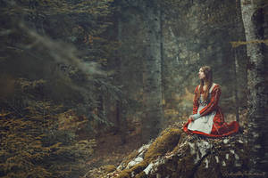 Echo of Silence by RaphaelleM