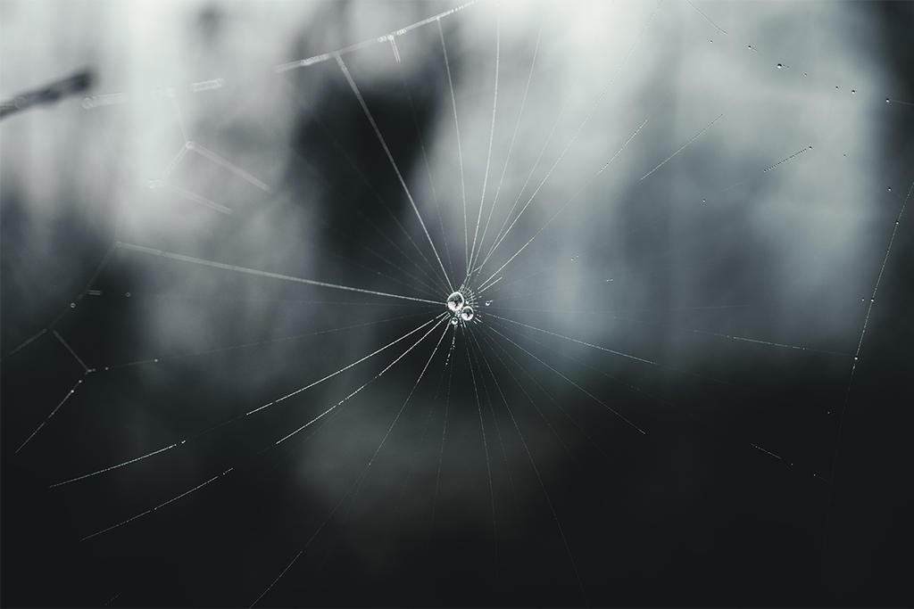 Crystal Pearls by RaphaelleM