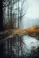 Winter Mirror by RaphaelleM