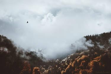 Soaring the Skies by RaphaelleM
