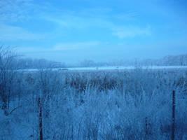Winter by nicefox1