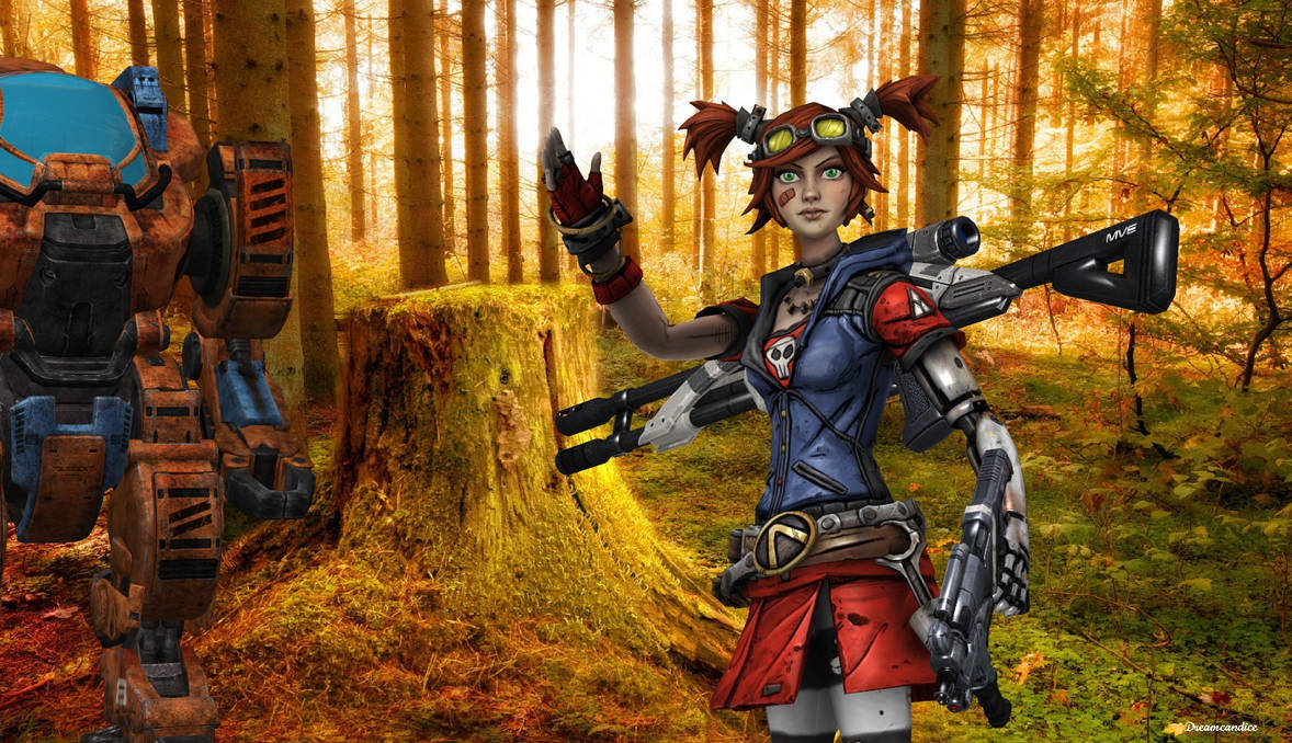 Borderlands 2 Best Weapons For Gaige